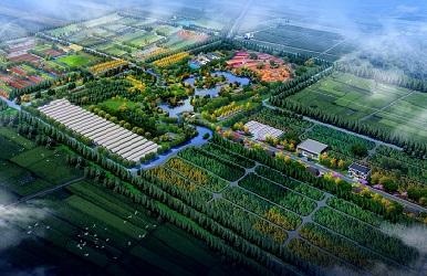 新疆喀什·绿美南疆林业产业园