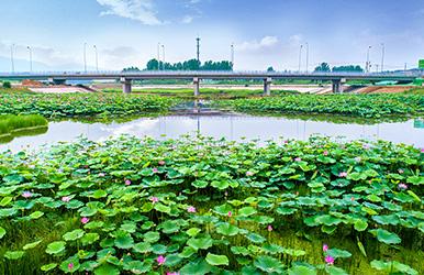 北京平谷·泃河新城段(上纸寨-洳河汇入口)治理工程